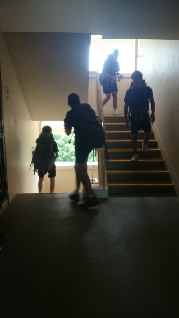 Stairs - a necessary evil.