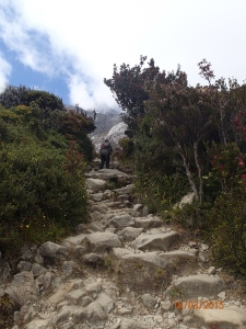 Almost to Laban Rata.